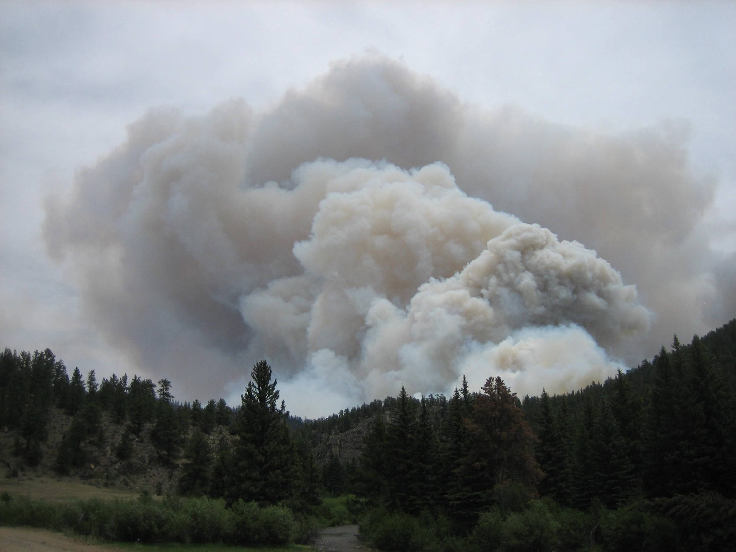 Smoke_column_-_High_Park_Wildfire