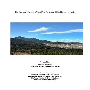 The Economic Impact of Post Wildfire Flooding Bill Williams Mountain