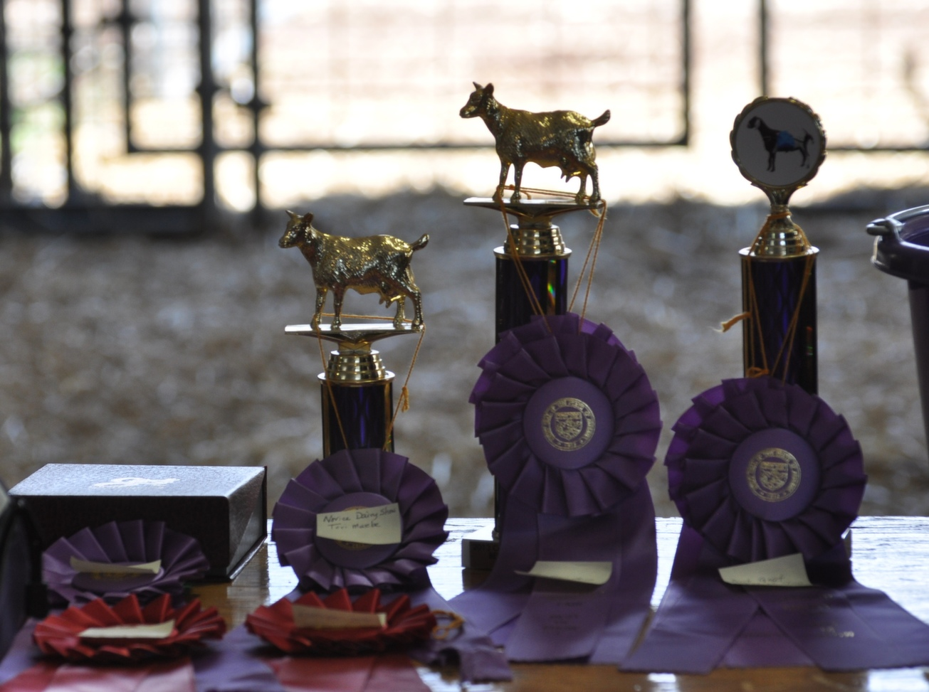 awards_rosettes
