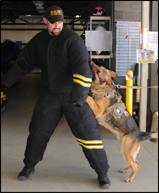 CCSO K9 Training Suit